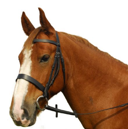 Heritage English Leather Hunting Bridle